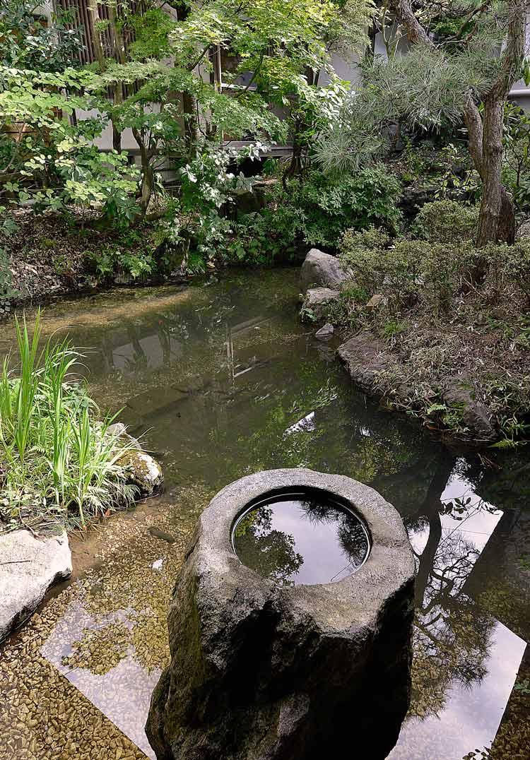 庭池も眺められます